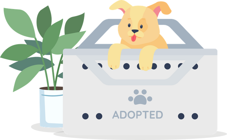 Golden puppy for adoption Illustration