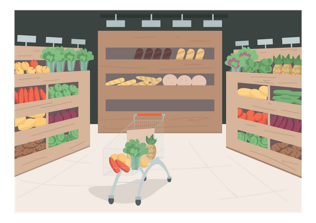 Grocery store Illustration