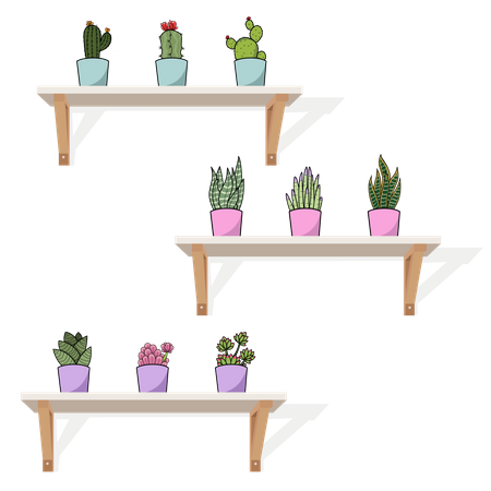Hanging pots and cactus Illustration