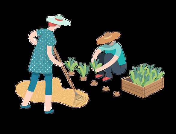 Harvesting people Illustration