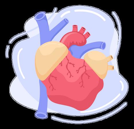 Heart Day Illustration