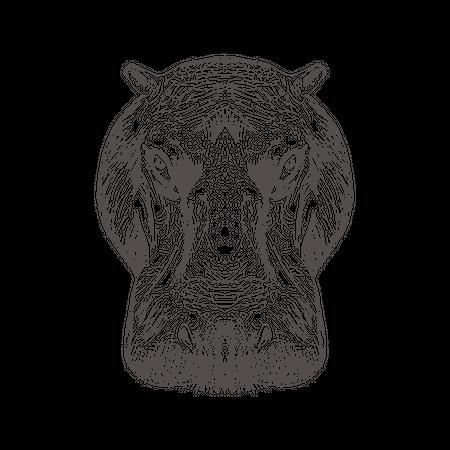 Hippopotamus Head Illustration