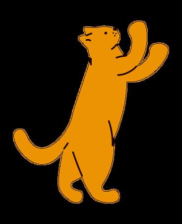 I Love My Cat Illustration