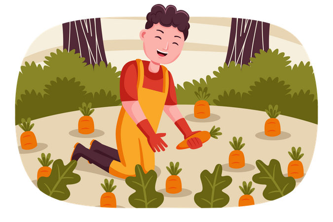 Male farmer collecting carrots Illustration