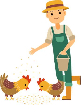 Male farmer feeding chicken and rooster Illustration