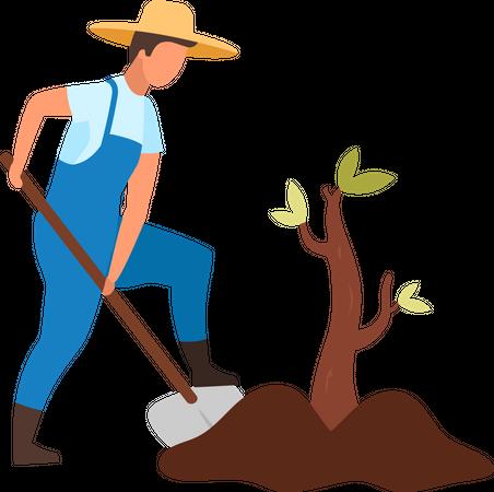 Male farmer planting small tree Illustration