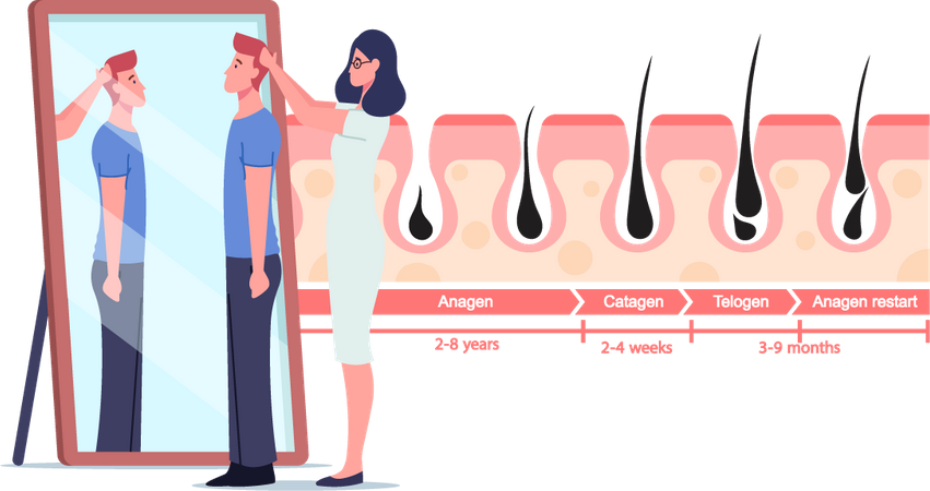 Male Hair growth patient Illustration