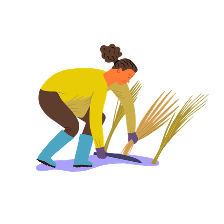 Man cutting crop Illustration