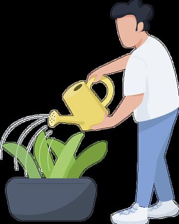 Man watering plant Illustration