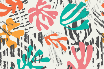 Matisse Patterns And Illustrations Illustration Pack