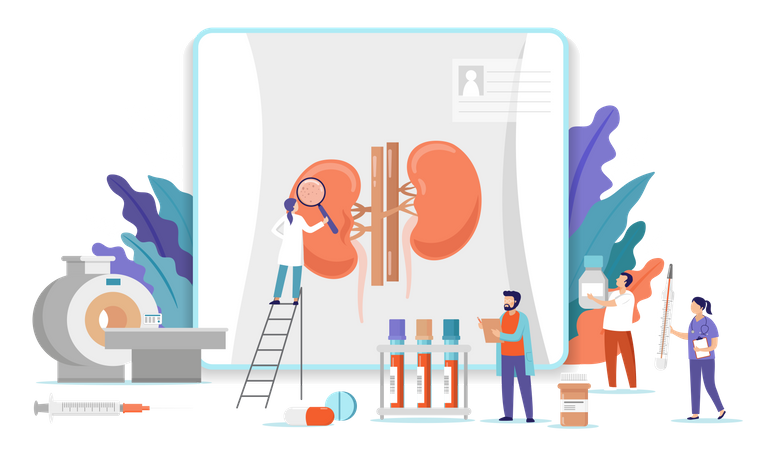Medical research team doing research on human kidney Illustration