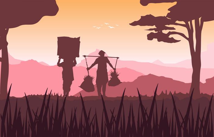 Morning Asian Farmer in Rice Field Illustration