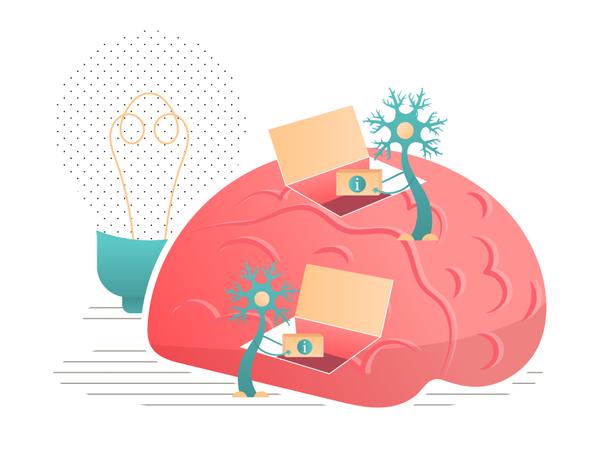 Neurons transmit information to the brain Illustration