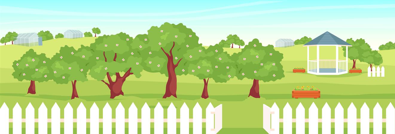 Orchard Illustration