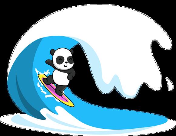 Panda Surfing In The Sea Illustration