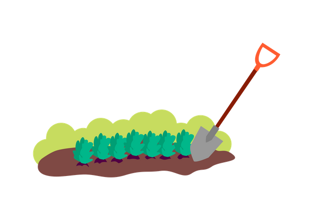 Patch of brown soil with plants and shovel Illustration