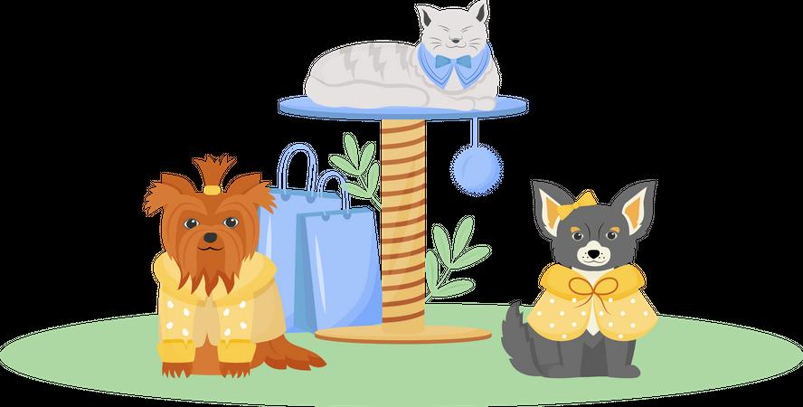 Pet fashion Illustration