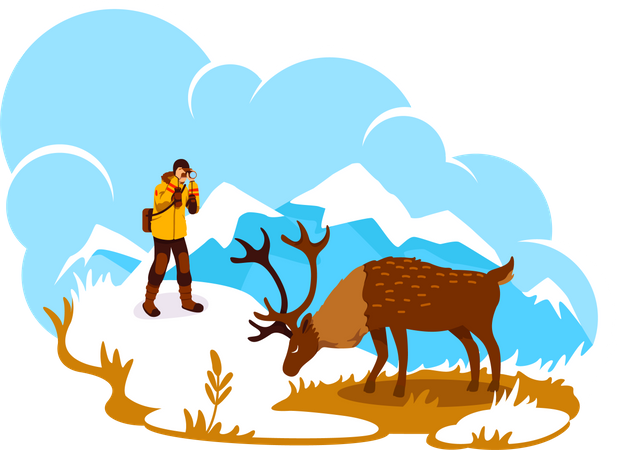Photography in Alaska Illustration