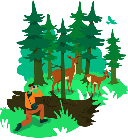 Photography in forest Illustration
