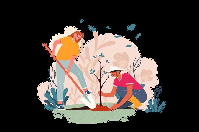 Planting Plants Illustration