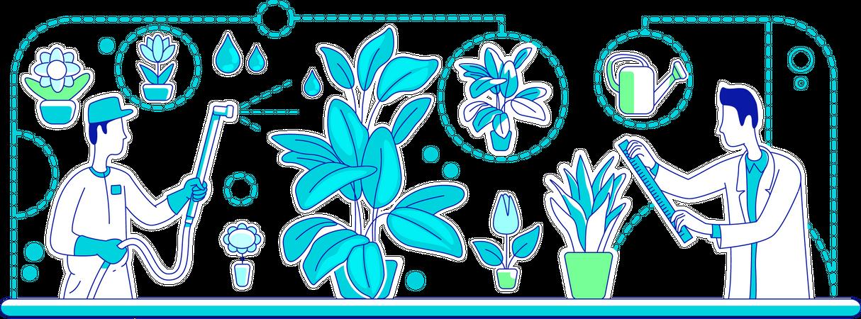 Plants genetic engineering Illustration
