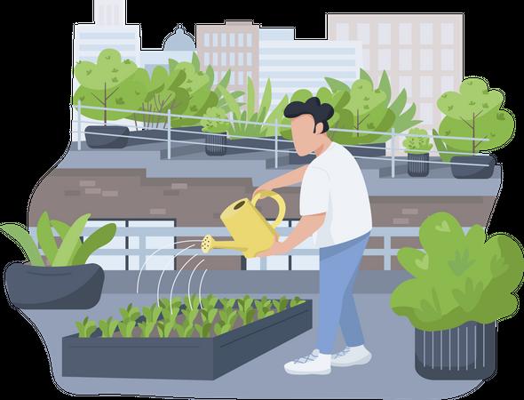 Plants watering Illustration