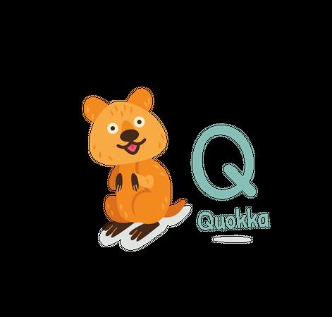 Quokka Illustration