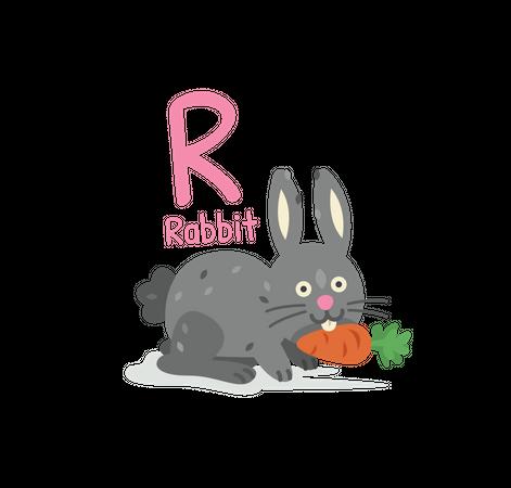 R for Rabbit Illustration