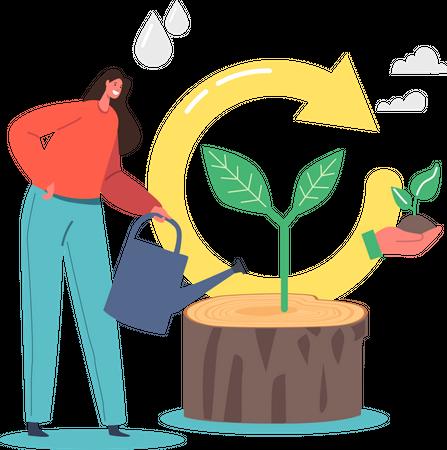 Refresh and Renew Planting Illustration