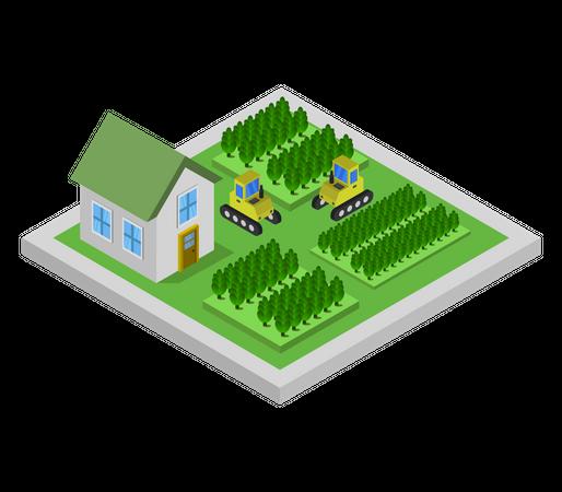 Rural House Illustration