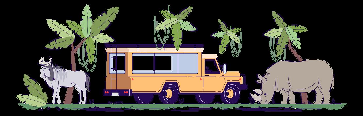 Safari trip Illustration