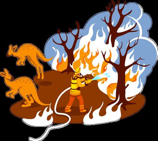 Save burning forest Illustration