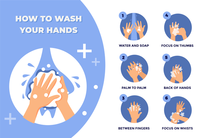 Steps of How to Wash your Hands Illustration