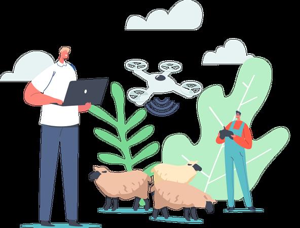 Technology for Grazing Sheep Illustration