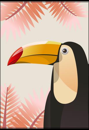 Toucans Illustration