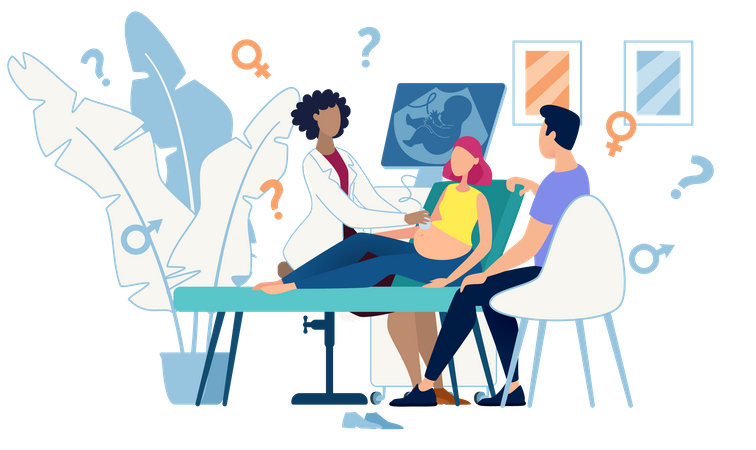 Ultrasound Cabinet Examination of Pregnant Woman Sex Determination Illustration