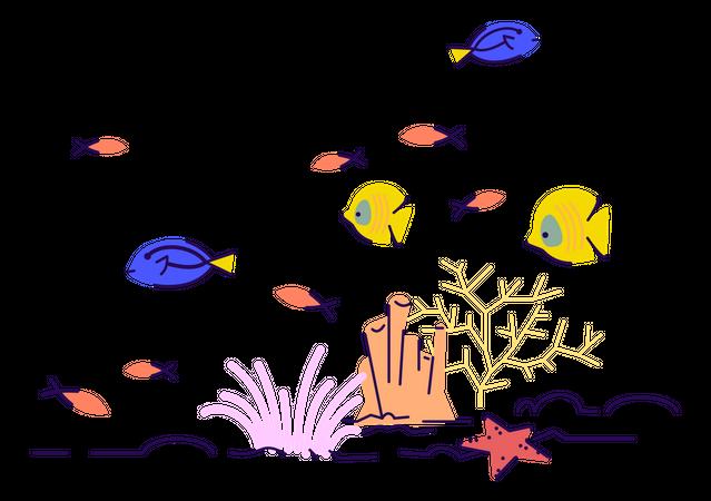Underwater wildlife Illustration
