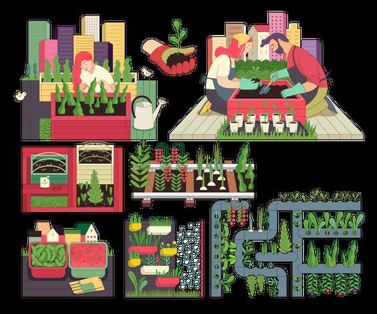 Urban farming and gardening Illustration