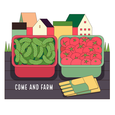 Urban farming and gardening - cucumbers and tomatoes Illustration