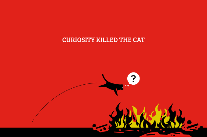 Vector artwork showing a cat jump into a fire and killing itself because it is curious and want to know what fire is Illustration