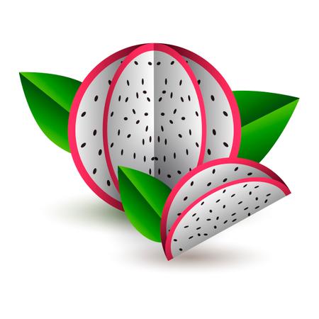 Vector tropical summer exotic fruit paper cut Illustration