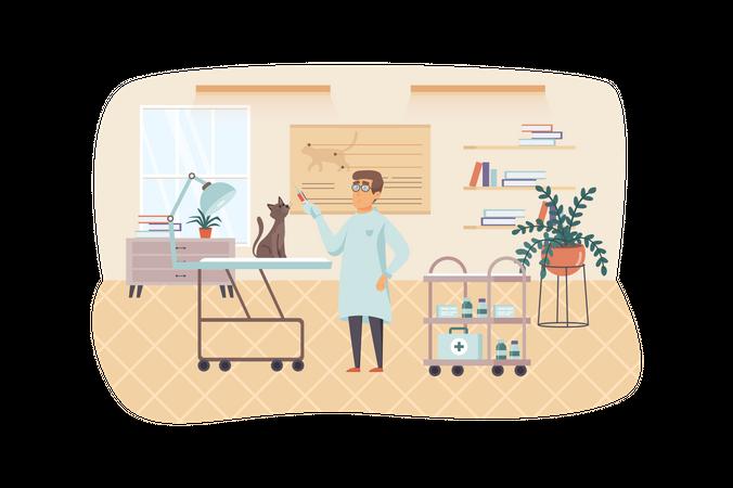 Veterinarian examining and vaccinated cat Illustration