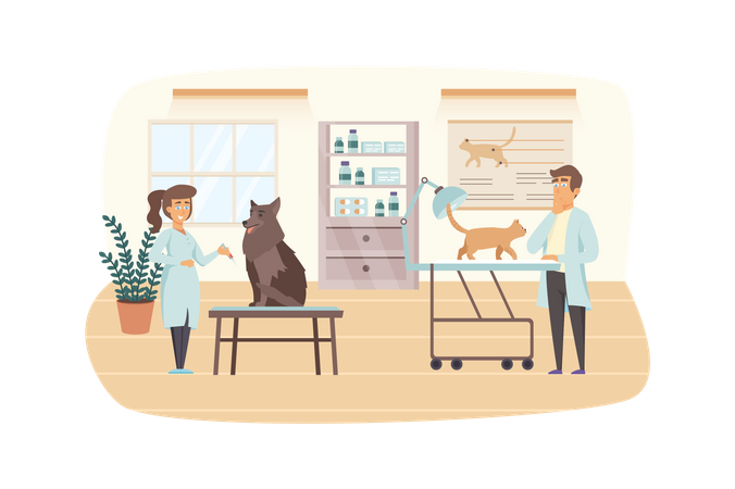Veterinary clinic scene. Veterinarians examine cat and dog. Medical office interior. Vet medicine, pet vaccination, health care concept. Vector illustration of people characters in flat design Illustration