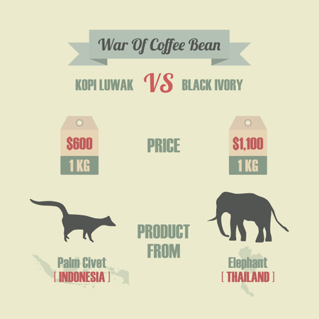 War Of Coffee Bean, Kopi Luwak VS Black Ivory, The Most Expensive Coffee In The World Illustration