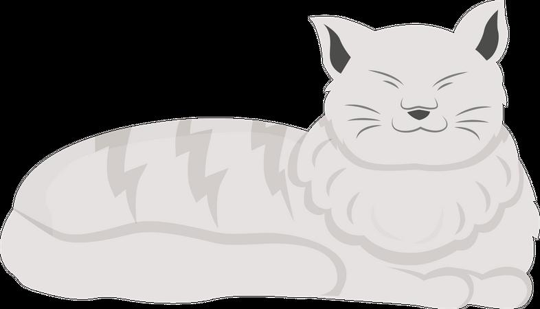 White cat Illustration