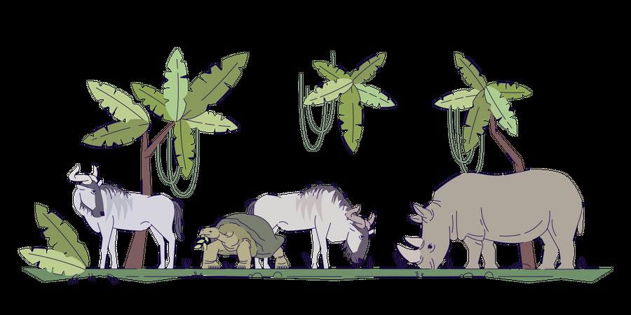 Wild Animals In their Natural Habitat Illustration