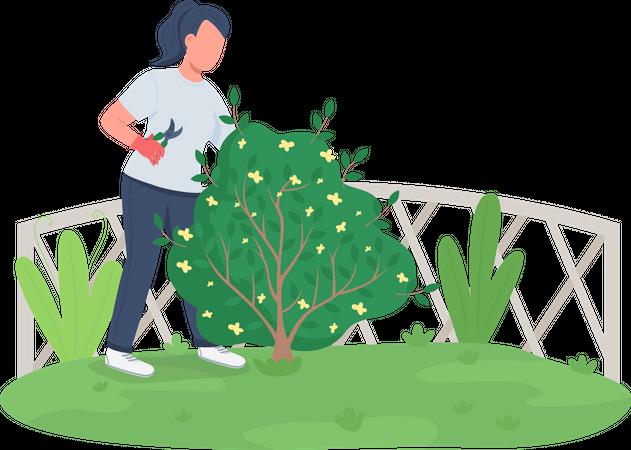 Woman trimming bush Illustration