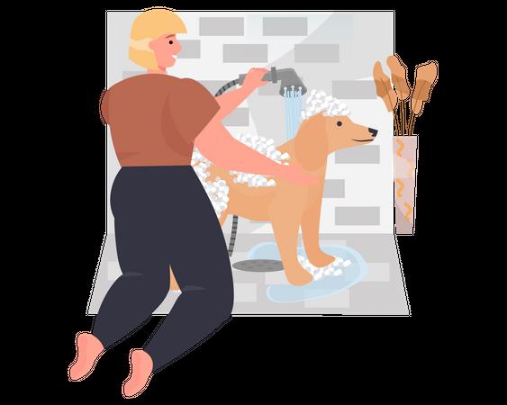 Woman washing his dog in bathroom Illustration