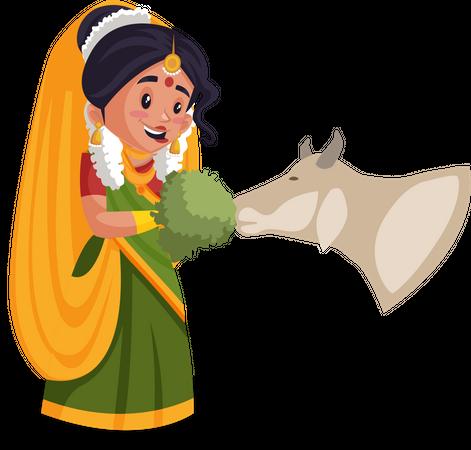 Yashoda maa feeding grass to cow Illustration